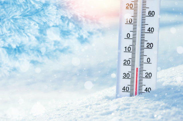Better Response Times to Market Needs with Quick Freeze