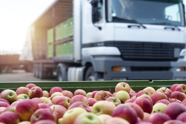The Role of the Global Cold Chain in the Local Food Industry